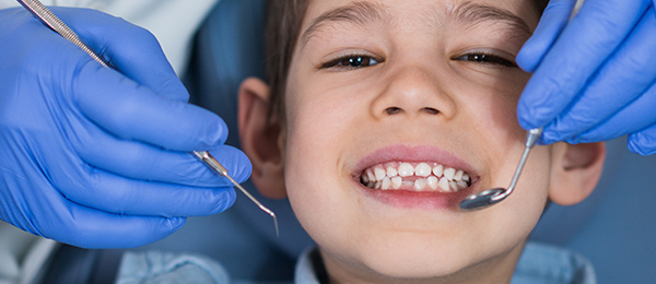 Dentist checking young boy's teeth