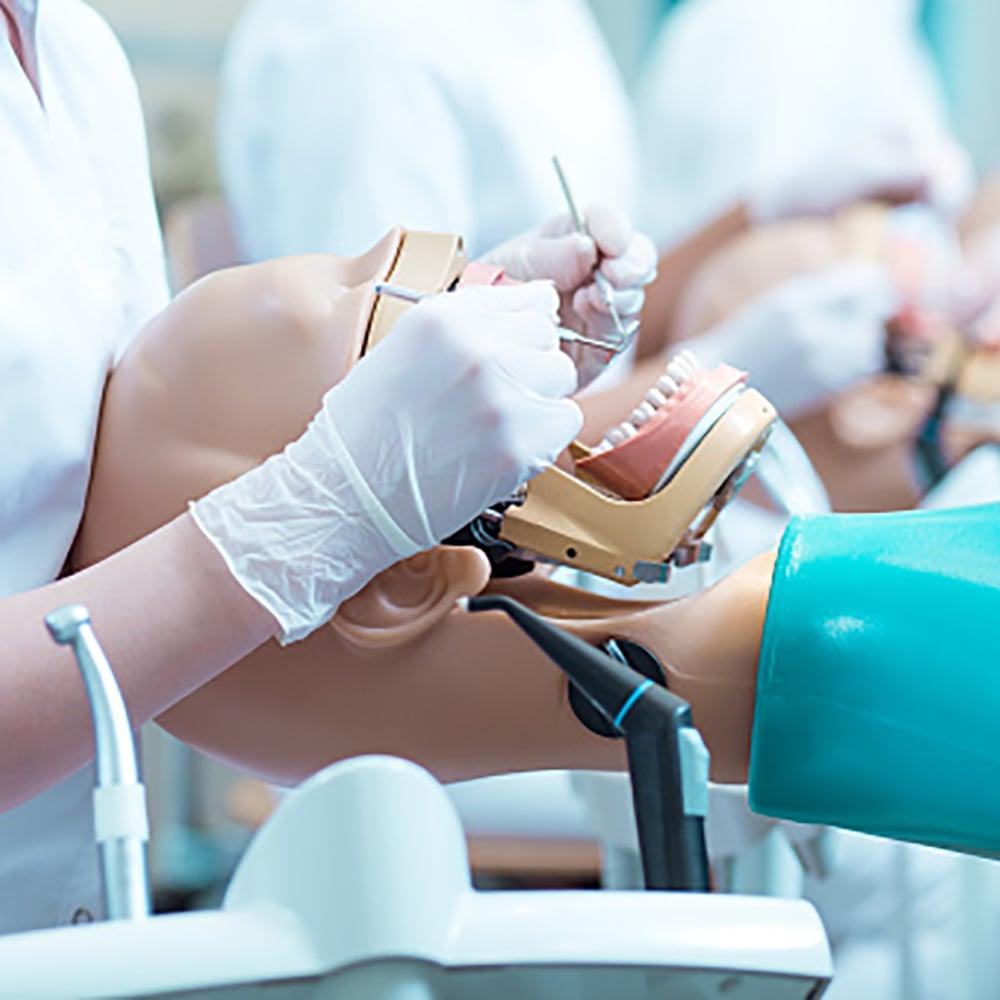 Dental student working on model